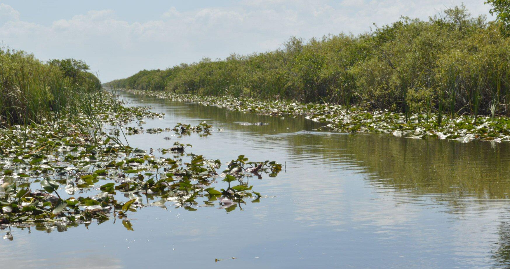 glades2